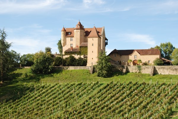 This Historic Chateau, with origins dating back to the fourteenth and sixteenth century, dominates its hillside with views over its private vineyard to the distant Pyrenees Mountains.