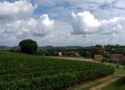 Showing the Local Village & Vineyards