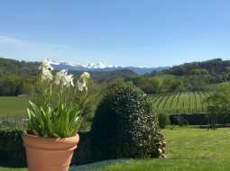 An Exquisitely Presented Family Home with Luxury Gite & Pyrenean Mountain Views !