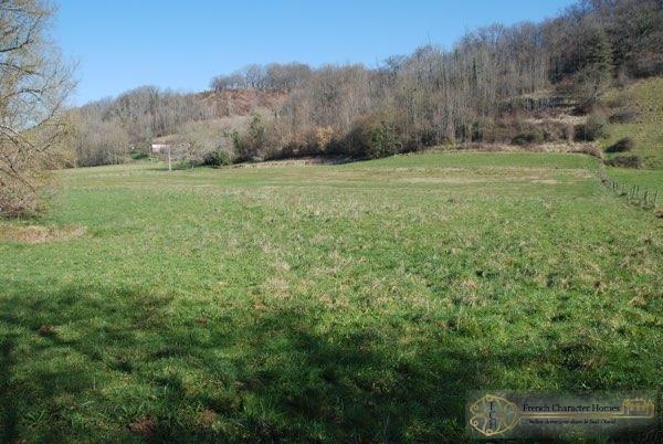 Meadow & Woodland