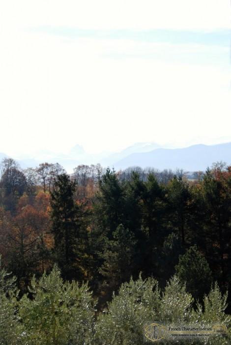 The Mountain Views